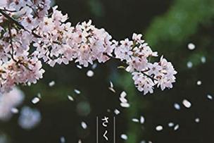 """music""""  April  """" ✨"""