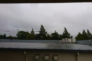 台風一過、早く来~い🌞